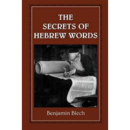 The Secrets of Hebrew Words (BOK)