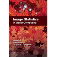Image Statistics in Visual Computing (BOK)