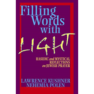 Filling Words with Light: Hasidic and Mystical Reflections on Jewish Prayer (BOK)