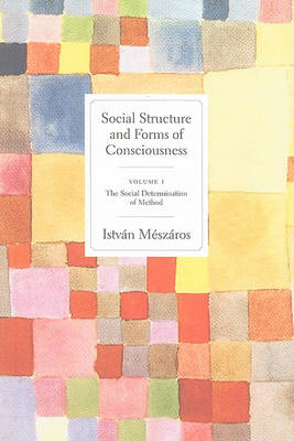 Social Structures and Forms of Consciousness (BOK)