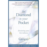 Diamond in Your Pocket (BOK)