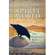 Awakening to the Spirit World: The Shamanic Path of Direct Revelation (BOK)