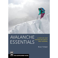 Avalanche Essentials (BOK)