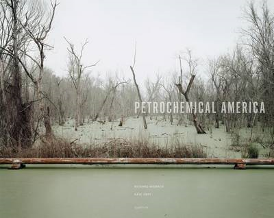 Petrochemical America (BOK)