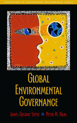 Global Environmental Governance (BOK)