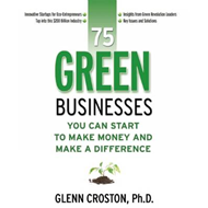Green Businesses: You Can Start to Make Money and Make a Difference (BOK)