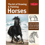 The Art of Drawing & Painting Horses: Capture the Majesty of Horses and Ponies in Pencil, Oil, Acryl (BOK)