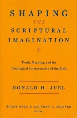 Shaping the Scriptural Imagination (BOK)