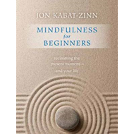 Mindfulness for Beginners (BOK)