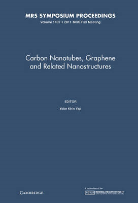 Carbon Nanotubes, Graphene and Related Nanostructures (BOK)