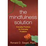 Mindfulness Solution (BOK)