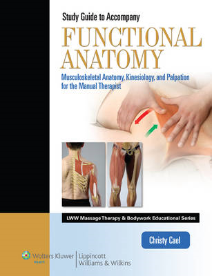 Student Workbook for Functional Anatomy: Musculoskeletal Anatomy, Kinesiology, and Palpation for Man (BOK)