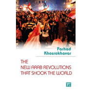 The New Arab Revolutions That Shook the World (BOK)