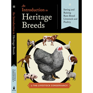 An Introduction to Heritage Breeds (BOK)