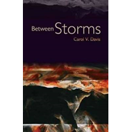 Between Storms (BOK)