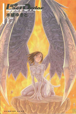 Battle Angel Alita: Volume 17: Last Order (BOK)