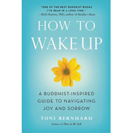How to Wake Up (BOK)
