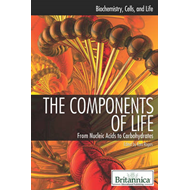 Components of Life (BOK)