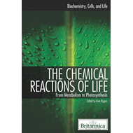 Chemical Reactions of Life (BOK)