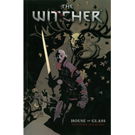 Witcher Volume 1 (BOK)