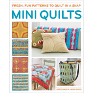 Mini quilts: Fresh, fun patterns to quilt in a snap (BOK)