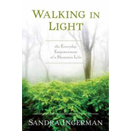 Walking in Light (BOK)