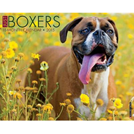 Just Boxers 18-Month Calendar (BOK)