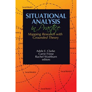 Situational Analysis in Practice (BOK)