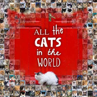 All the Cats in the World (BOK)