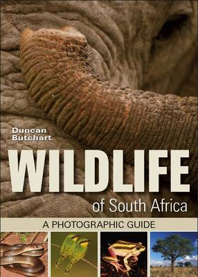 Wildlife of South Africa (BOK)