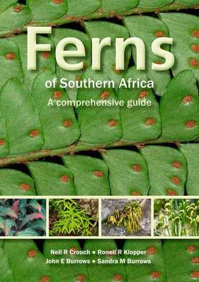 Ferns of Southern Africa: A Comprehensive Guide (BOK)