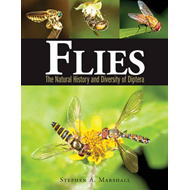 Produktbilde for Flies: The Natural History and Diversity of Diptera (BOK)