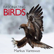 Fascinating Birds (BOK)