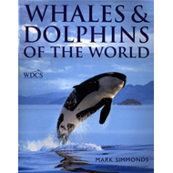 Whales and Dolphins of the World (BOK)