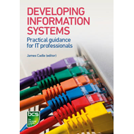 Produktbilde for Developing Information Systems - Practical guidance for IT professionals (BOK)