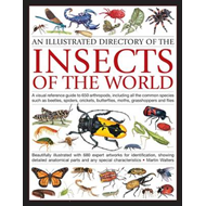 Illustrated Directory of Insects of the World (BOK)