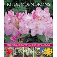 Rhododendrons (BOK)