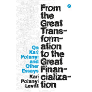 From the Great Transformation to the Great Financialization: On Karl Polanyi and Other Essays (BOK)