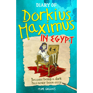 Diary of Dorkius Maximus in Egypt (BOK)
