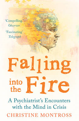Falling into the Fire (BOK)