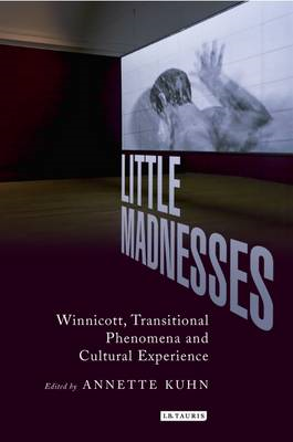 Little Madnesses: Winnicott, Transitional Phenomena & Cultural Experience (BOK)