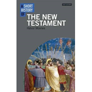 Short History of the New Testament (BOK)