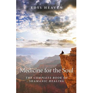 Produktbilde for Medicine for the Soul (BOK)