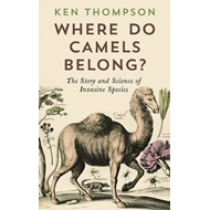 Where Do Camels Belong? (BOK)