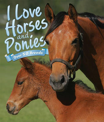 I Love: Horses and Ponies (BOK)