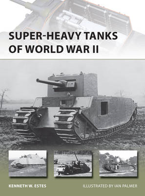 Super-heavy Tanks of World War II (BOK)
