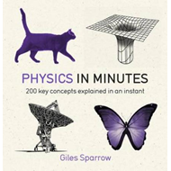 Physics in Minutes (BOK)