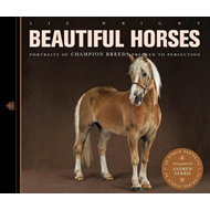 Beautiful Horses (BOK)