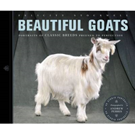 Beautiful Goats (BOK)