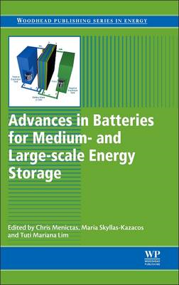 Advances in Batteries for Medium and Large-Scale Energy Stor (BOK)